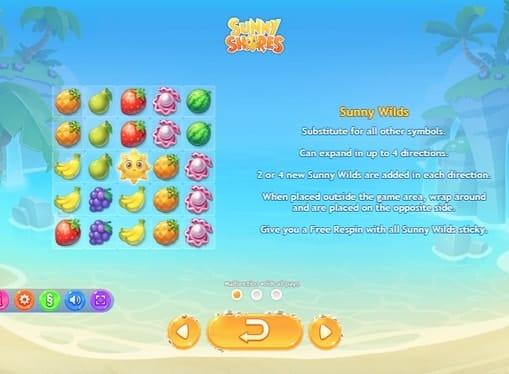 Правила игры в автомате Sunny Shores