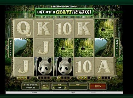 Комбинация символов в игре Untamed Giant Panda
