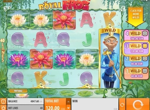 Wild комбинация в игровом онлайн автомате Royal Frog